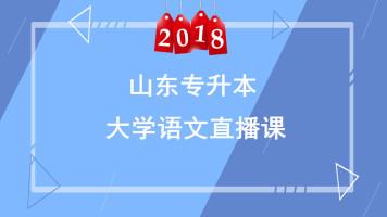 2018山东专升本大学语文直播课