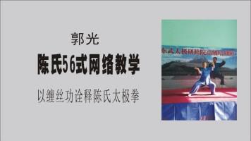 郭光陈氏56式第一段2小节