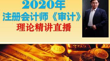 2020年注会《审计》理论精讲