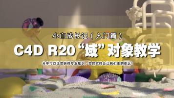 C4D R20域对象-小白快速入门图形动画