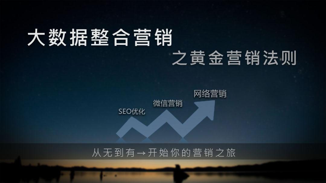 零基础实战秘籍 seo的道和术「网络营销 SEO优化 微信营销」