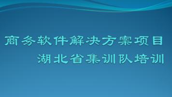 商务软件解决方案项目湖北省集训队培训