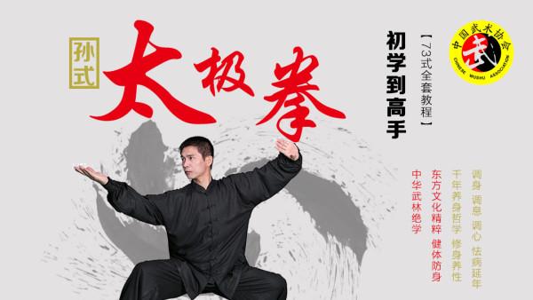国际标准竞赛套路 孙氏七十三式太极拳零基础到实战高手全套教程