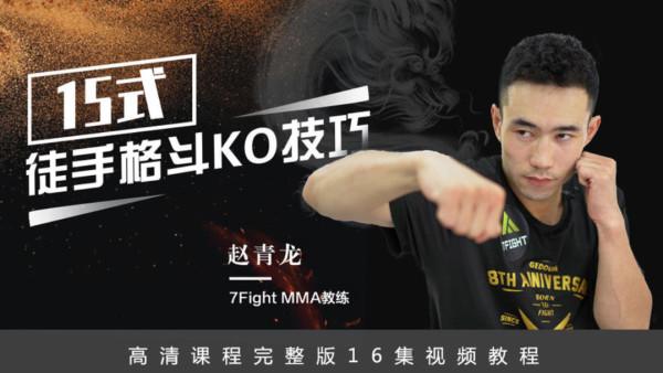 15式徒手格斗KO技巧