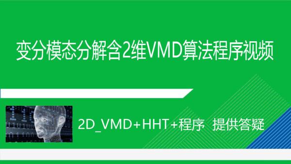 2版_变分模态分解和2D_VMD及希尔伯特黄变换HHT与MATLAB程序视频