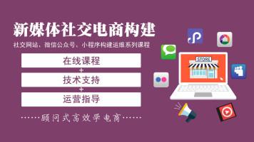 社交电商新媒体搭建实操企业网站微信公众号小程序运维系列课程