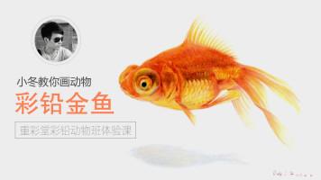 写实彩铅动物篇—金鱼【重彩堂教育】