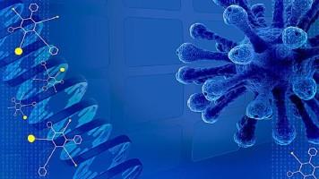 高中生物必修一分子与细胞