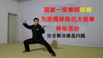 陈辉太极拳缠丝功法