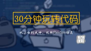 30分钟玩转代码(FlexSim)