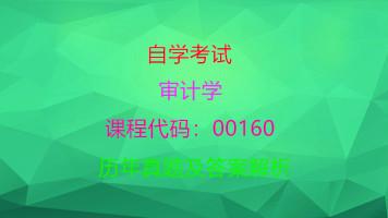 00160审计学自考历年真题及答案解析和知识点