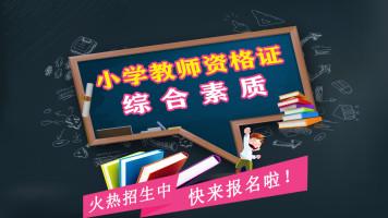 综合素质(小学教师资格证笔试)