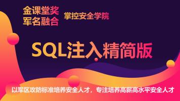 掌控-SQL注入Web安全/kali/黑客信息安全/网络安全渗透linux运维