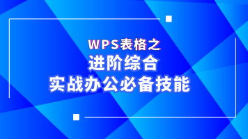 WPS/Excel表格之进阶综合实战办公必备技能(office、Excel、办公)
