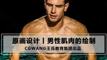 男性肌肉的绘制丨原画CG教程丨手绘教程丨CGWANG王氏教育集团