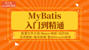配置文件介绍/Mapper映射/动态SQL/关系映射/缓存原理/