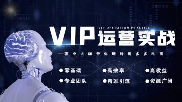 2021拼多多VIP运营实战班全系列