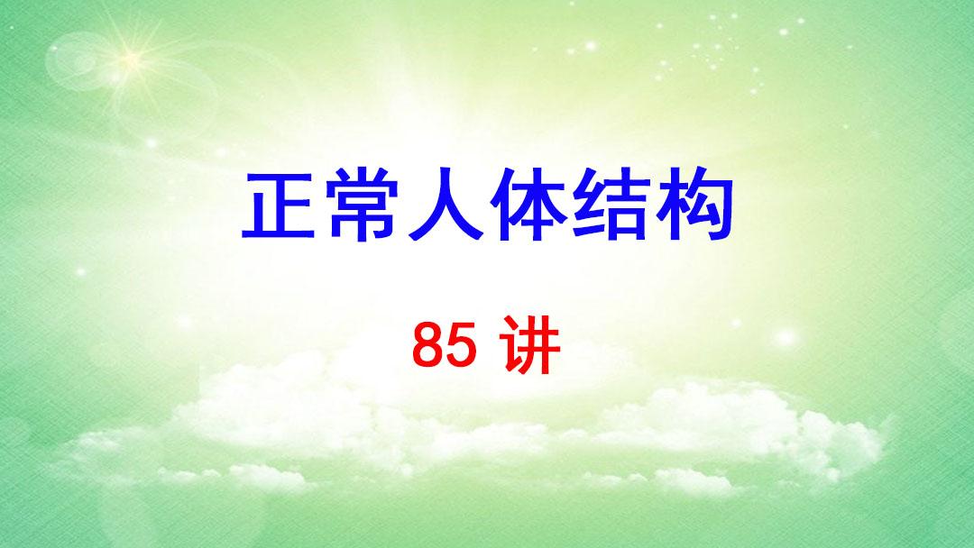 天津医学高等专科学校 正常人体结构 贾明昭 85讲