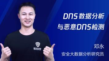 DNS数据分析与恶意DNS检测
