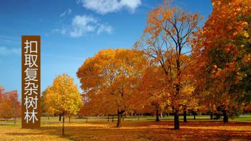 【知识解析】-PS混合颜色带解析及使用-用混合颜色带扣除复杂树林