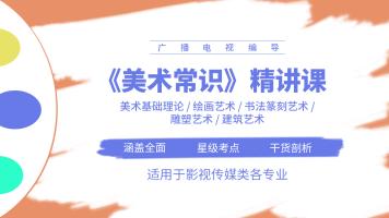 美术常识精讲/基础理论/绘画/书法篆刻/雕塑/建筑艺术/易甲艺考