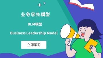 BLM模型:业务领先模型(升级版)