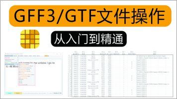 TBtools   GFF3/GTF 文件操作讲演