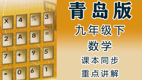 青岛版六三制小学数学九年级(下册)同步教学