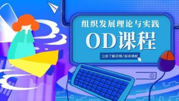 OD:组织发展理论与实践