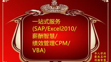 D006+一站式服务(SAP/Excel2010/薪酬智慧/绩效管理CPM/VBA)