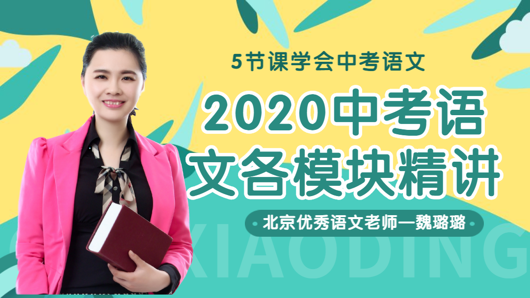 2020中考语文各模块精讲