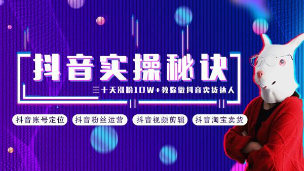 做抖音电商 抖音短视频PR+AE 网络营销新媒体自媒体淘宝客快手