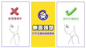 人体结构侧面颈部结构造型的绘画【漫画教程】【原画教程】