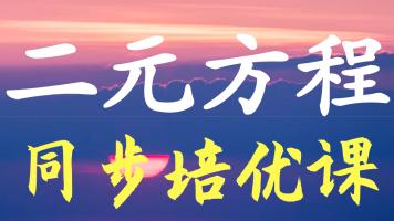 初中二元方程培优(北师大版,人教版,苏教版适用)