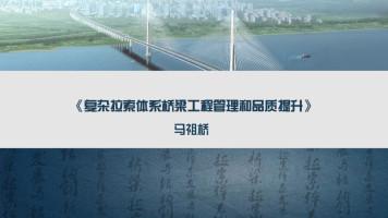 复杂拉索体系桥梁工程管理和品质提升