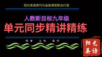 人教新目标九年级同步精讲精练(武汉专版)