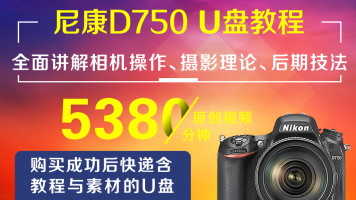 U盘版-尼康D750摄影从入门到精通