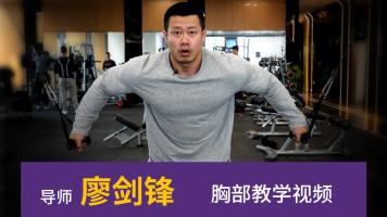 廖剑锋胸部训练教学视频