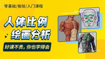 人体比例绘画分析