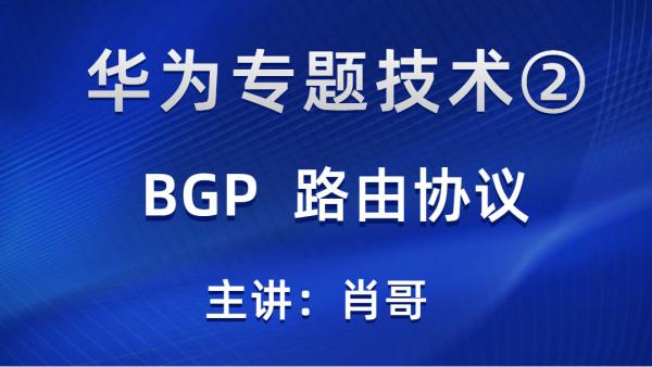 华为专题②-BGP路由协议