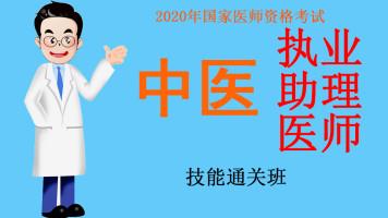 2020年医师资格考试中医执业助理医师技能通关班