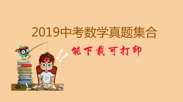 2019中考数学真题大集合