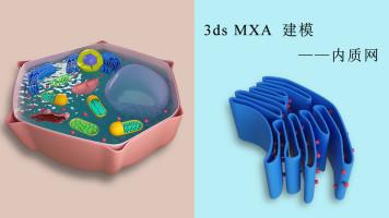3ds MAX 细胞系列——内质网