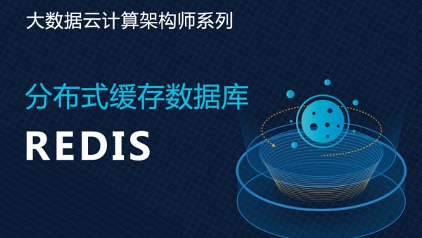 分布式缓存数据库Redis 大数据云计算架构师系列
