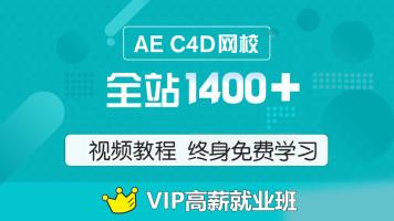 AEC4D VIP就业班