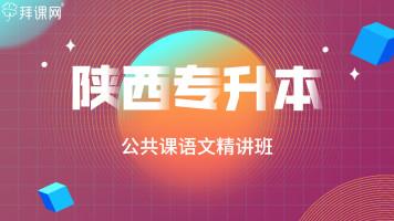 【陕西专升本】公共课语文精讲班