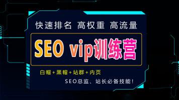 SEO内页排名技术-SEO引流关键词快速排名-SEO优化VIP课程