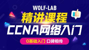 5IE讲师,CCNA网络工程师之零基础-网络入门CCNA/HCIA/CCNP/HCIP