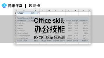 趣味班 办公技能——EXCEL枢纽分析表