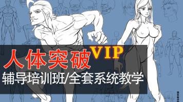 零基础和进阶人体结构培训课程日系写实角色原画插画漫画肌肉解剖